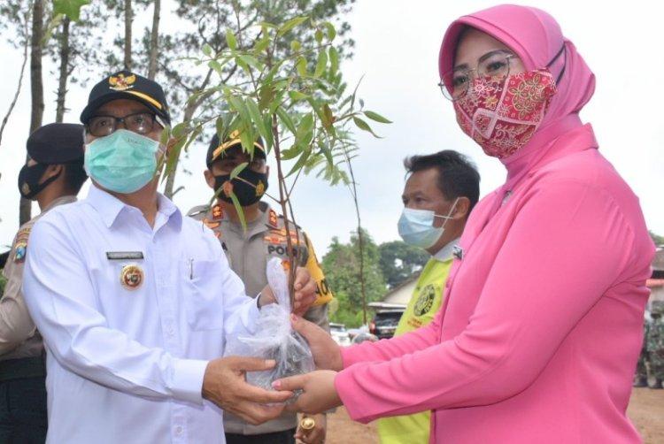 Gawangi Gerakan Penanaman Sejuta Pohon di Pacet